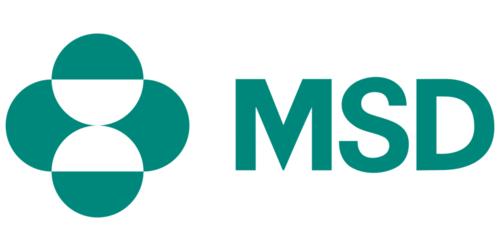 MSD Website Project